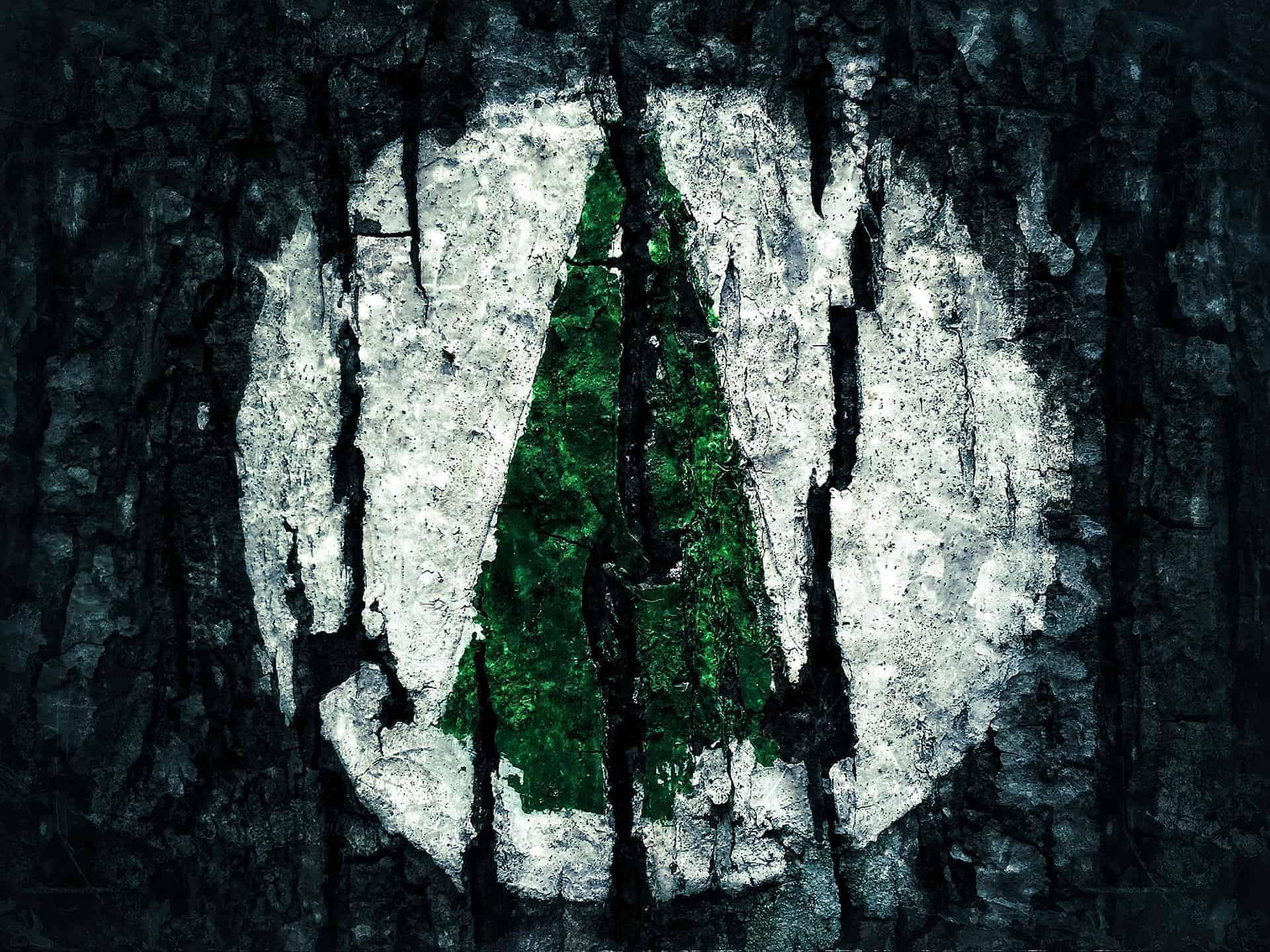 artnorama - Coniferous Tree