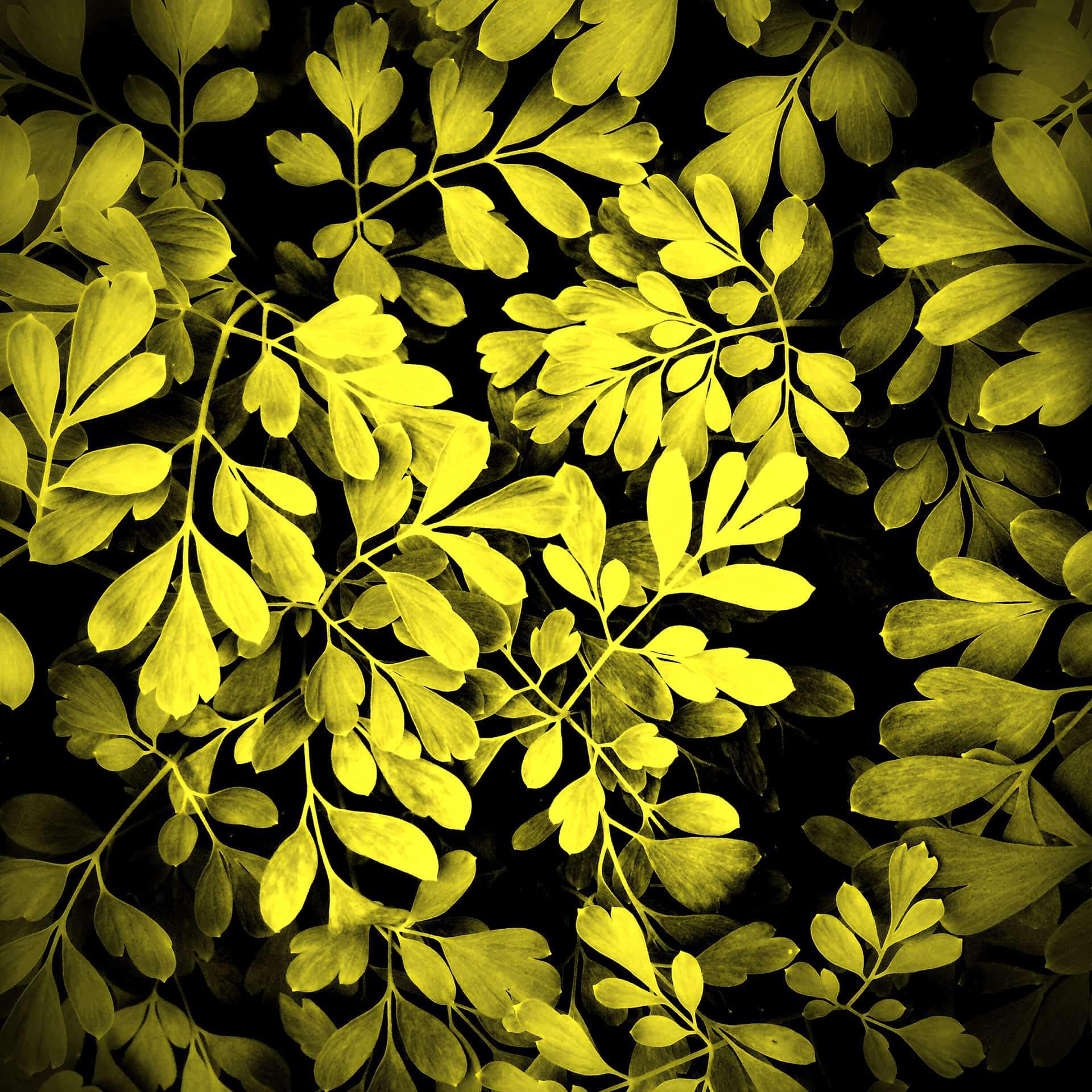 artnorama - Yellow Leaf
