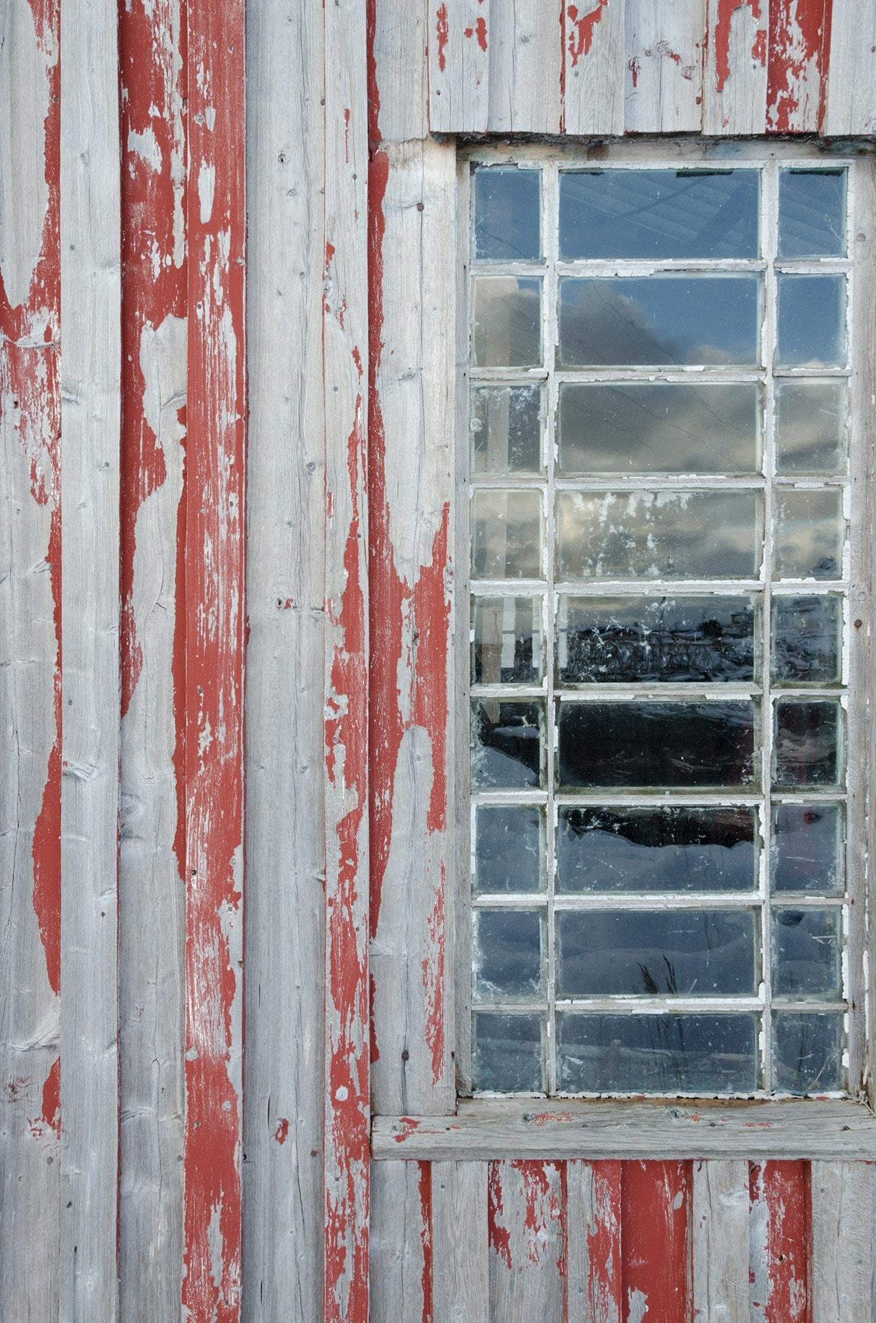 artnorama - Reflecting Windows