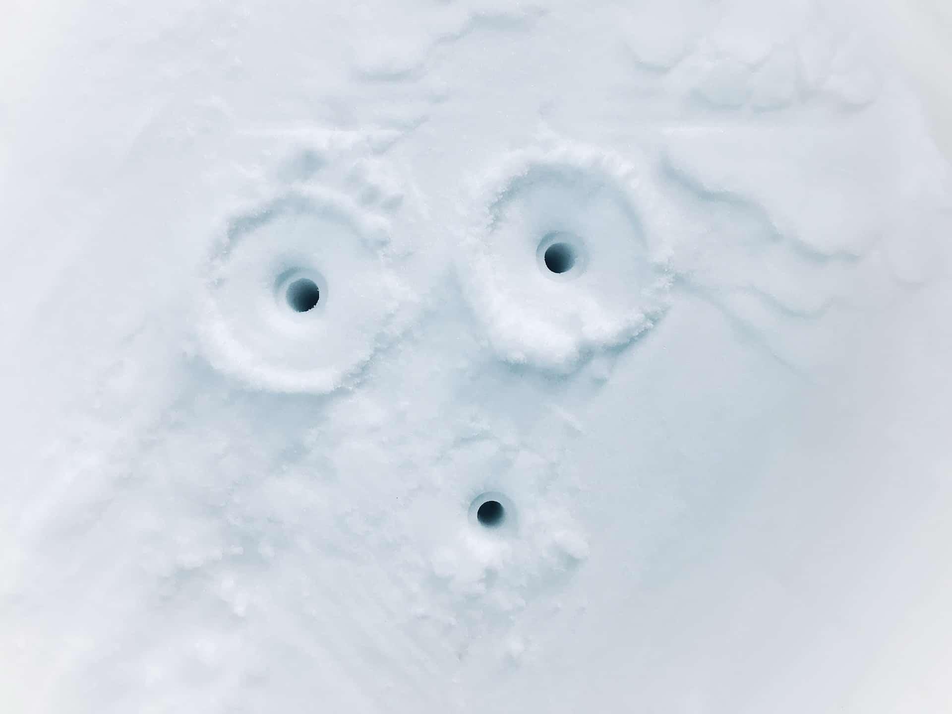 artnorama - Snowmen