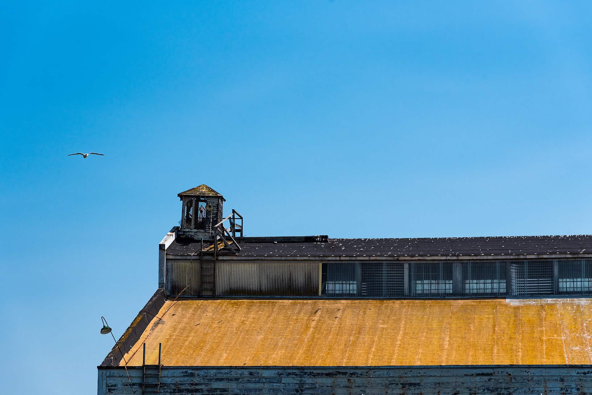 artnorama - Harbor Roof