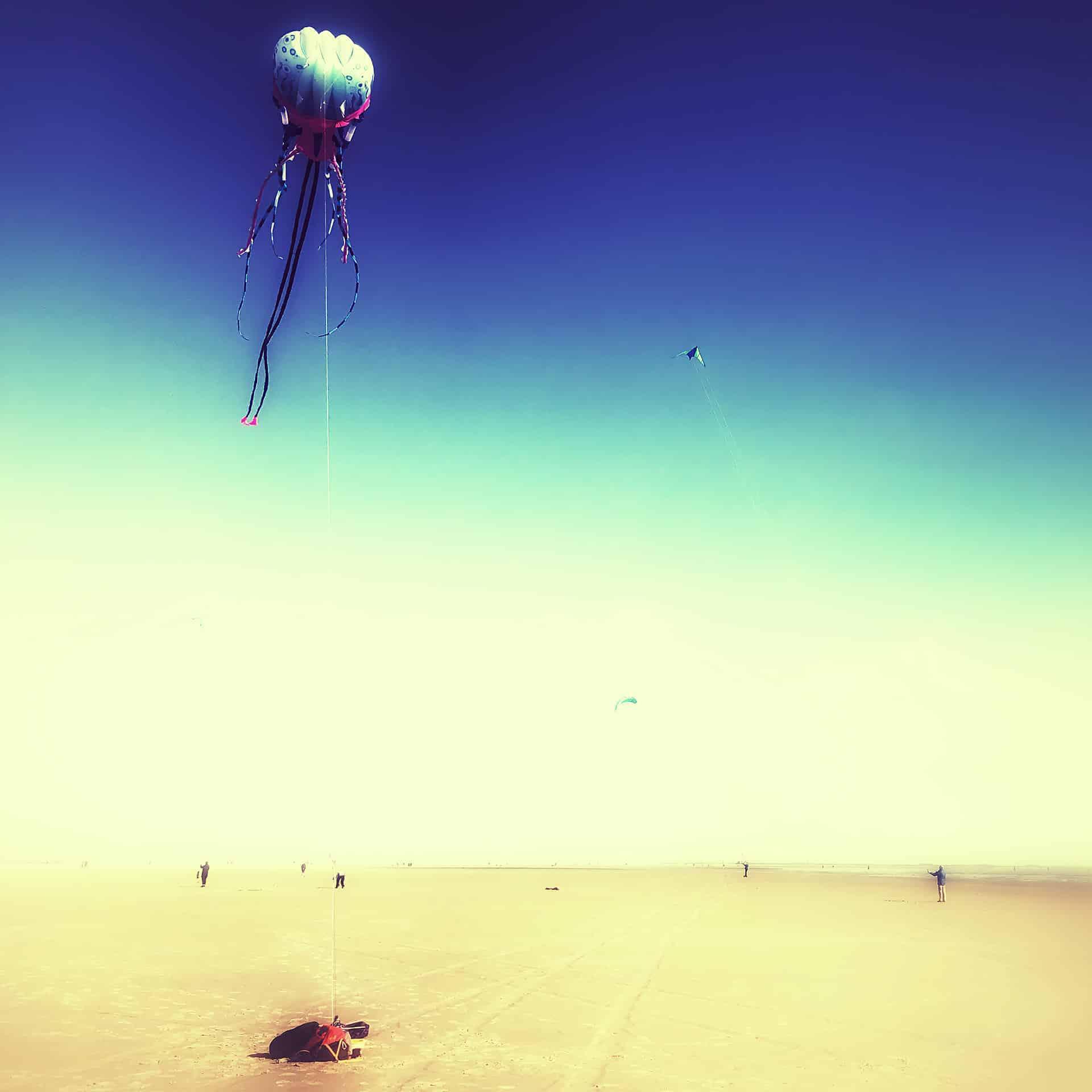 00588 - artnorama dream_kite