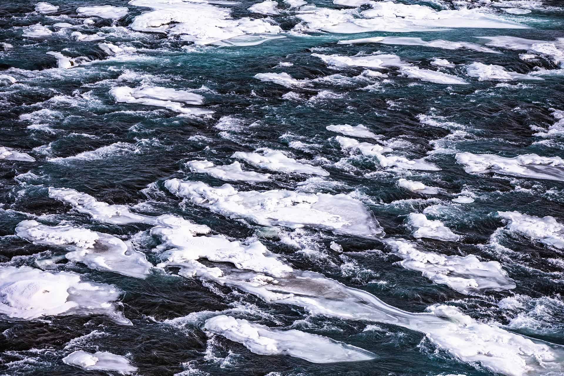 artnorama - White Water Plaice